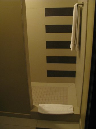 The Mayo Hotel:                   Entrance to shower. Wide instead of deep.