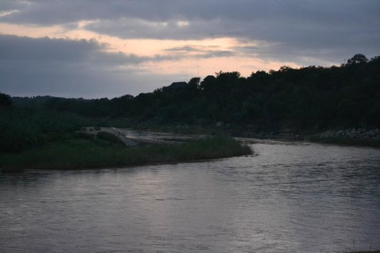 Naledi Bushcamp and Enkoveni Camp:                   Tusker faces the river