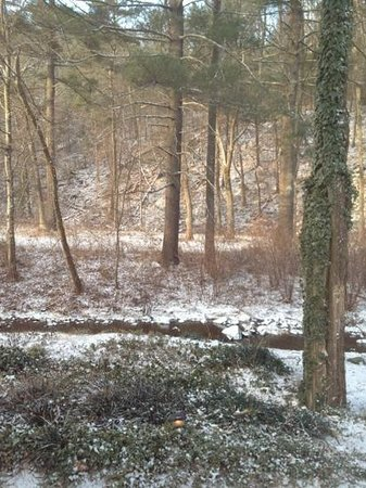 Brookside Cabins:                   woke up to snow