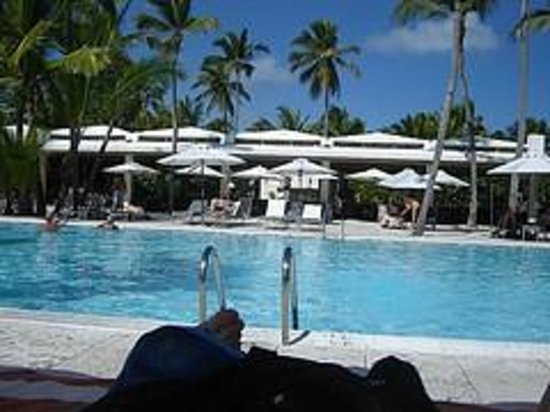 Catalonia Royal Bavaro:                   Infinity pool