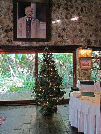 Misty Hills Country Hotel: Déjà un sapin de Noël à la mi-novembre