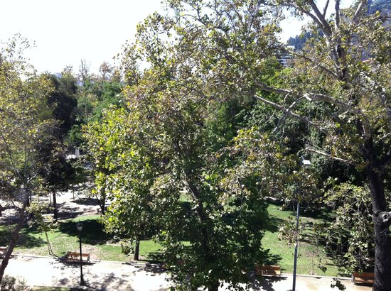 Su Merced:                   View of Parque Forestal from 4th floor terrace