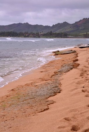 Aston Islander on the Beach:                   Beach View