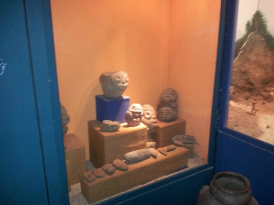 Amber Museum :                                     pottery