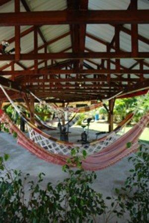 Kekemba Resort Paramaribo: hammocks