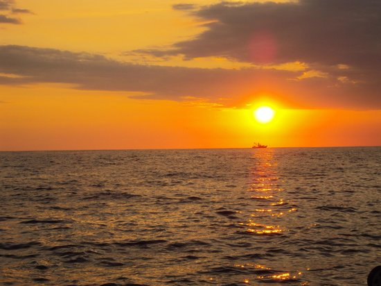 Planet Dolphin Cruises:                                                                         Best sunset we've seen i