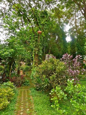 Tao Garden Health Spa & Resort:                   uno de los pasillos caminando hacia las habitaciones