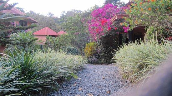 بوكويت جاردن إن هوتل:                   Boquete Garden Inn                 