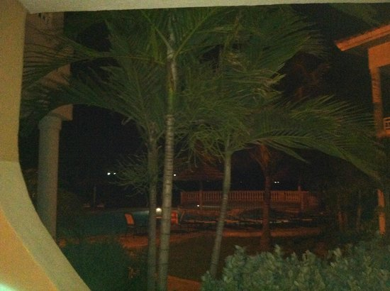Divi Village Golf and Beach Resort:                                     view