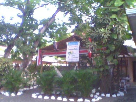 Cabinas Coco Azul: Garden