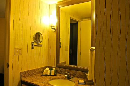 Hilton Los Angeles Airport:                   Bathroom