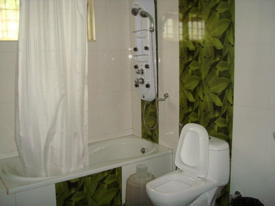 Camelot Resort: bathroom