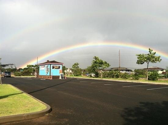 Akamai Coffee Company:                   Akamai Coffee Co! This place rocks! and has the best coffee on Maui!