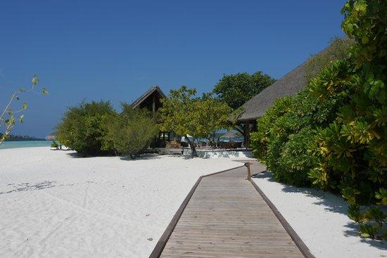 Cocoa Island by COMO:                   вид