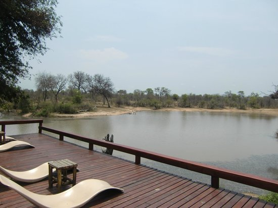 Gomo Gomo Game Lodge 사진