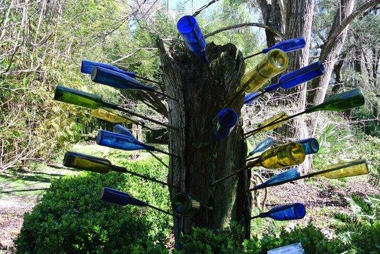 Kanapaha Botanical Gardens: Bottle Tree