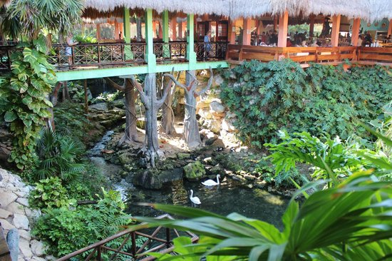 Iberostar Quetzal Playacar : Walkway to buffet
