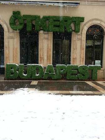 Budapest Best Apartments:                   Trees lol.