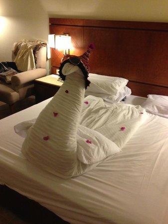 Cyrene Grand Hotel:                   :)