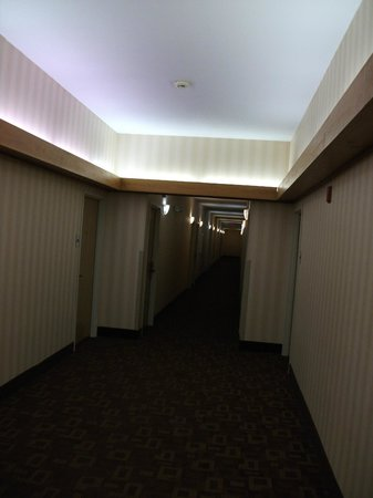 Red Roof Inn North Little Rock:                   The hallway leading to my room is well lit and has security cameras at each en