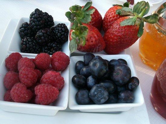 Barratts of Tyn Rhyl :                   fruits