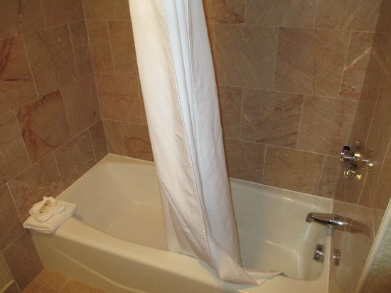 Comfort Inn Middletown:                   Tub Area