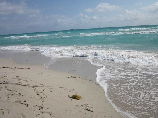 The Betsy - South Beach:                   Beautiful South Beach Waters across from The Betsy