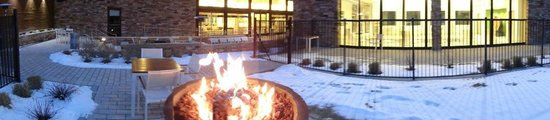 Element Denver Park Meadows: Firepit