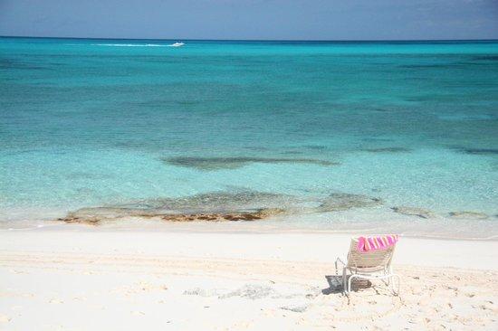 Sandy Toes Beach