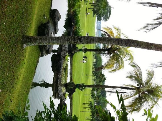 Orchid Country Club: golf course