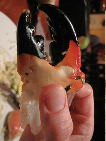 Capricorn Resort: Crab claws at the restaurant