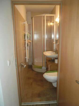 Haus Ditzer - Villa Theresia:                   Bathroom with heated towel rail.