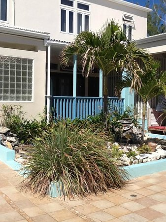 The Villas of Salt Cay: Garden/pond area