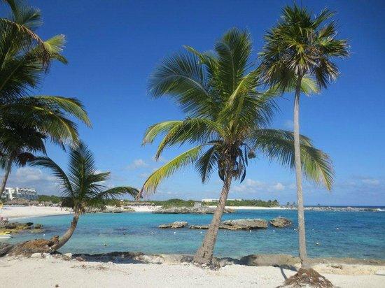 Grand Sirenis Riviera Maya Resort & Spa:                   resort beach