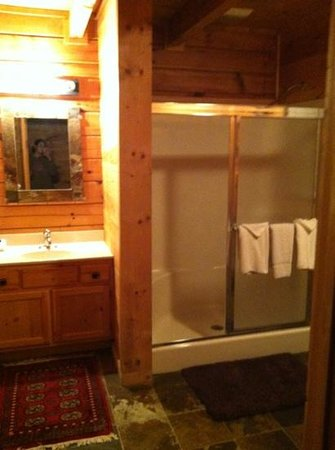 Mountain Shadows Log Home Resort:                   Bathroom with dual head shower