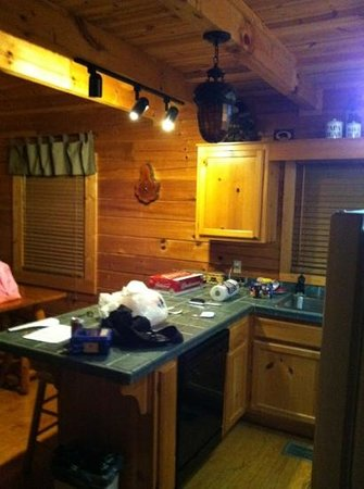 Mountain Shadows Log Home Resort:                   kitchen-pardon our mess