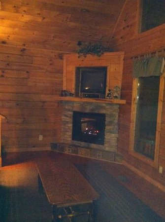 Mountain Shadows Log Home Resort:                   living room-fireplace/tv
