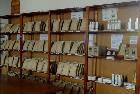 Montagu Museum:                   the herbal teas and cremes