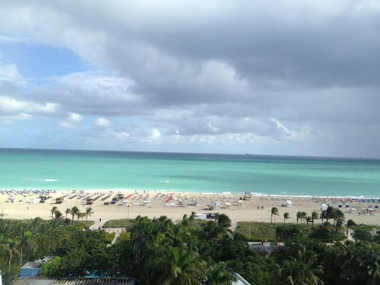Shore Club South Beach Hotel:                   View from room.