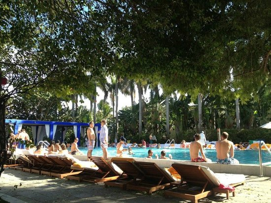 Shore Club South Beach Hotel:                   Poolside... gorgeous.