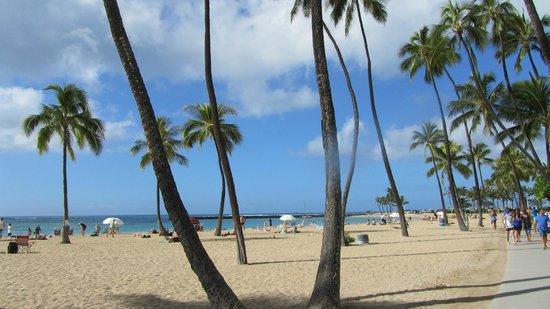 Hilton Hawaiian Village Waikiki Beach Resort :                   Beach