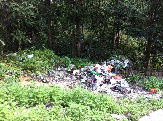 Kubah National Park :                   Rubbish