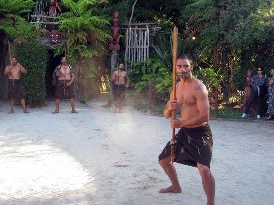 Aldea Maorí de Tamaki:                   show