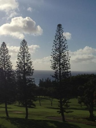 The Kapalua Villas, Maui:                   view from our condo