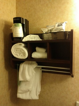 Hampton Inn Colorado Springs Central Air Force Academy:                   Coffee maker in the bathroom