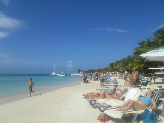 Bananarama Beach and Dive Resort:                   Beautiful beach, well tended and clean