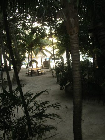Bananarama Beach and Dive Resort:                   The beach from our Cabana