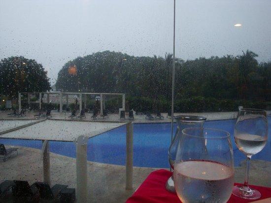 Dreams Villamagna Nuevo Vallarta:                   view from fancy mexican restaurant