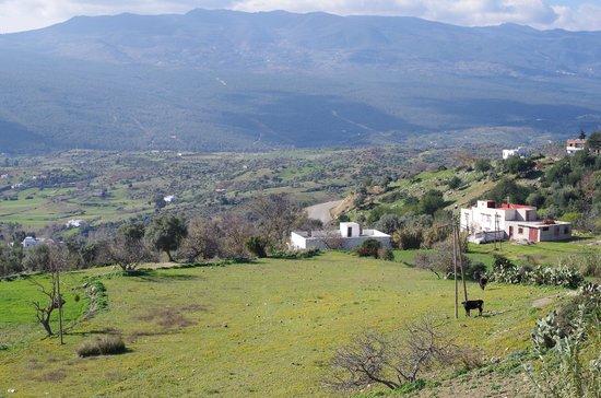 Casa Annasr:                   バルコニーからの眺め