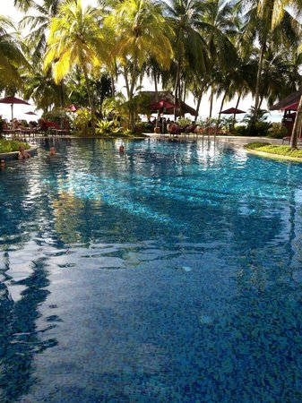 PARKROYAL Penang Resort, Malaysia: Clear blue sparkling pool in tropical garden setting